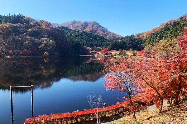 当社バスツアー「太平ツアー」で碓氷峠の秋ハイキングへ!